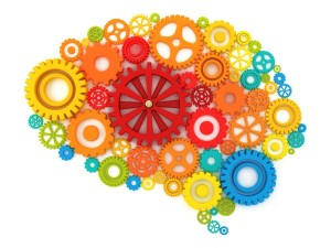Gears making up brain shape
