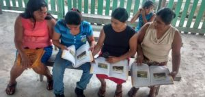 UEA UNESCO Chair free #ALL4SOCIALCHANGE PhD webinar on Bilingual Literacy for Life: an ethnographic study of an indigenous language literacy programme in Mexico