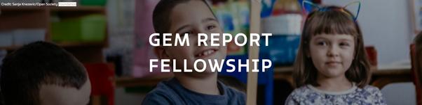 GEM Report Fellowship 2021 – Call for proposals