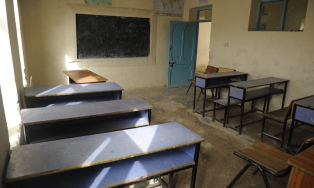 Looking back to move forward: Education pathways out of the pandemic