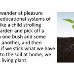seedling plant with cross section of soil showing roots beneath. Text alongside reads: We cannot wander at pleasure among the educational systems of the world, like a child strolling through a garden and pick off a flower from one bush and some leaves from another, and then expect that if we stick what we have gathered in soil at home, we shall have a living plant.
